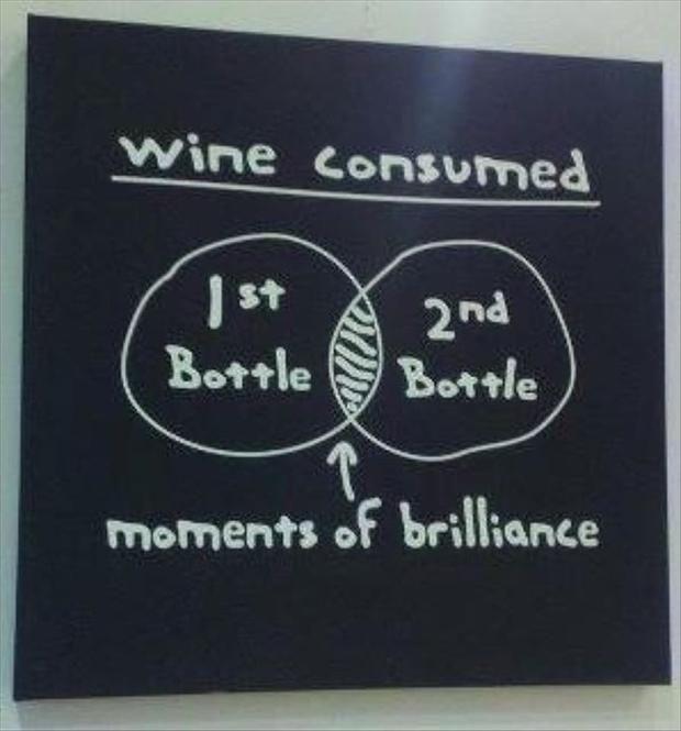 Best Wine Quotes: Best 25+ Wine Funnies Ideas On Pinterest
