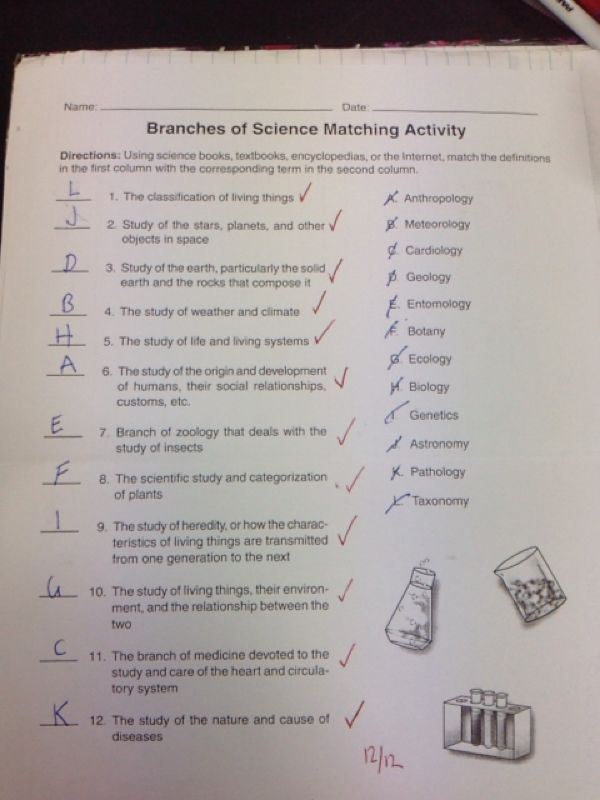 what are the three branches of science