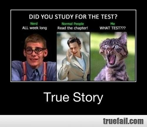 Funny Quotes About Exams And Studying Funny School Answers Funny Christmas Jokes Funny Quotes