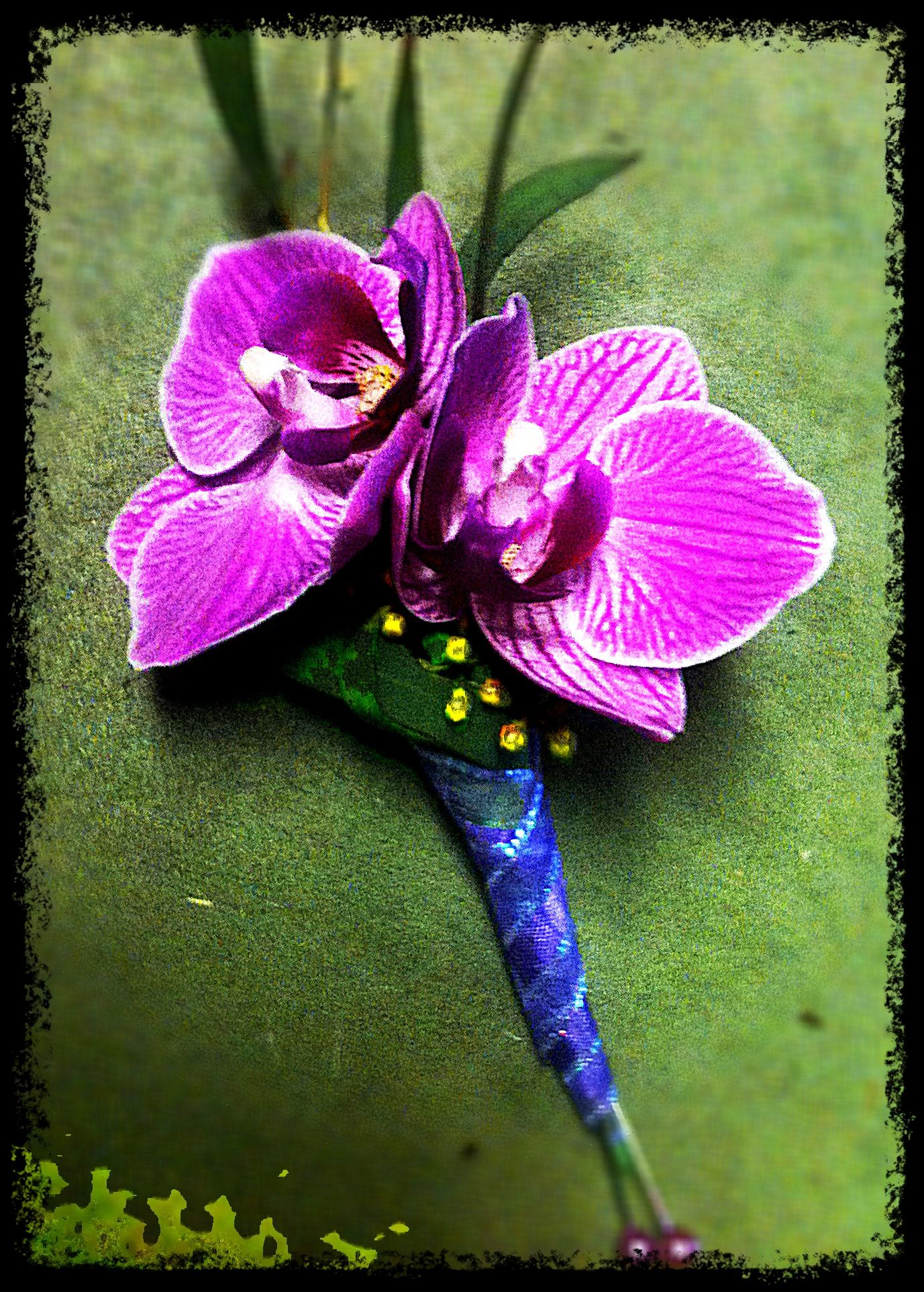 Purple Phalaenopsis Orchid Boutonniere Floral Design By Greens Beans Orchid Boutonniere Phalaenopsis Orchid Boutonniere