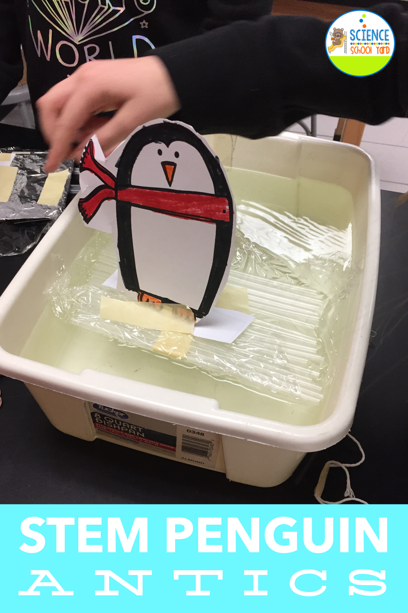 Stem Penguin Winter Antics Stations
