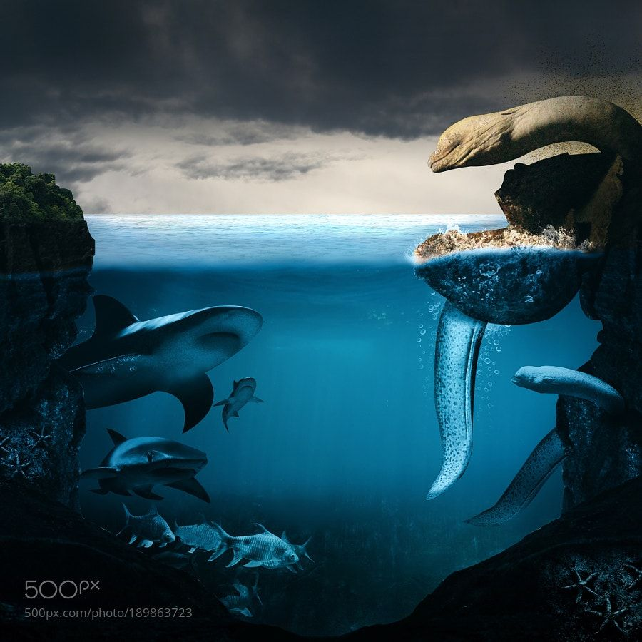 Sea Monsters by CarterCheah