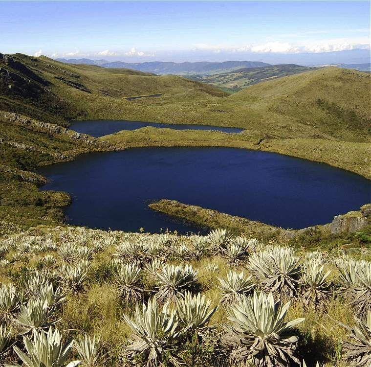 Las Lagunas De Siecha En El Parque Nacional Natural Chingaza En Guasca Cundinamarca Colombia Viaje Colombia Paisajes De Colombia Parques Nacionales