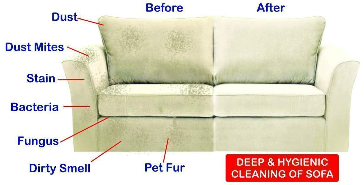 Http Searscarpetcleaningedmonton Make Every Day A Great With Sears Carpetcleaning Upholstery And Now Ductcleaning