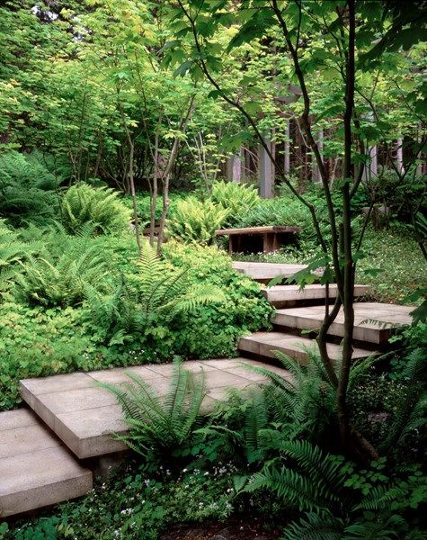 An Amazing Staircase Tucked Into The Landscape Shade Garden Pictures Paul R Broadhurst Associates Sea Shade Garden Design Garden Stairs Landscape Design