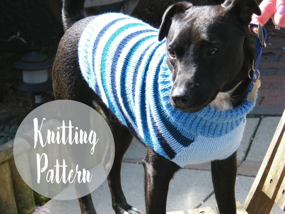 Dog Sweater Knitting Pattern | cabled dog sweater | Pinterest