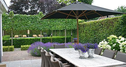 Tuinarchitect tuinontwerp moderne strakke en eigentijdse - Tuinontwerp ...