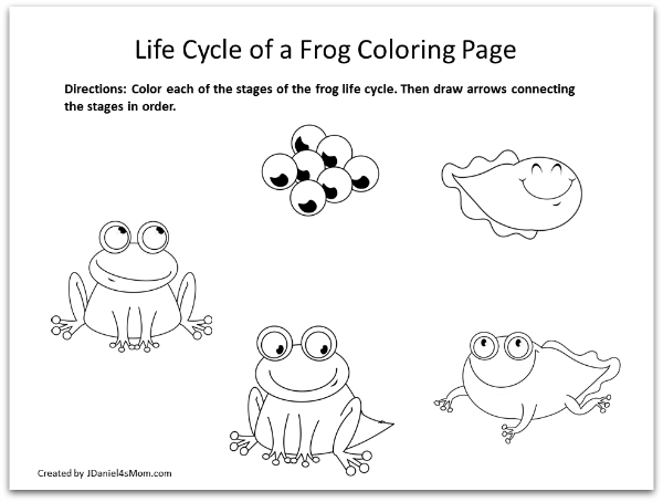 Frog Coloring Pages And Learning Activities Life Cycle Of A Frog Coloring Page Lifecycle Of A Frog Frog Coloring Pages Frogs Preschool