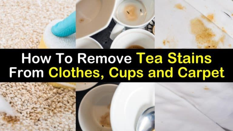 remove coffee stains from carpet naturally