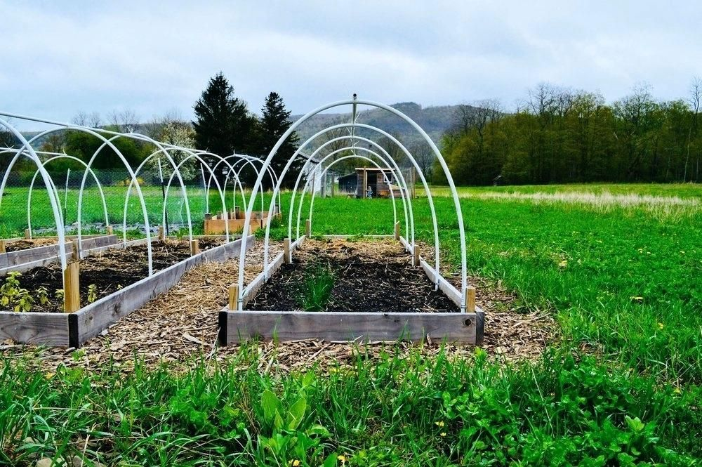 vegetable garden row covers savings | Vegetable garden ...
