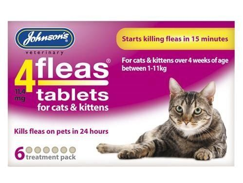 Pin On Cats Stuff