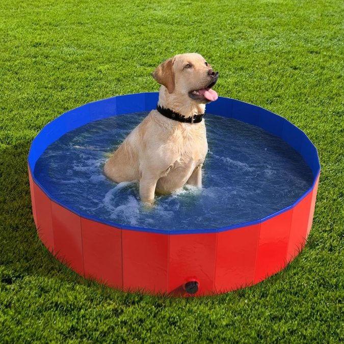 Pet Pal Dog Pool x Red Plastic Universal