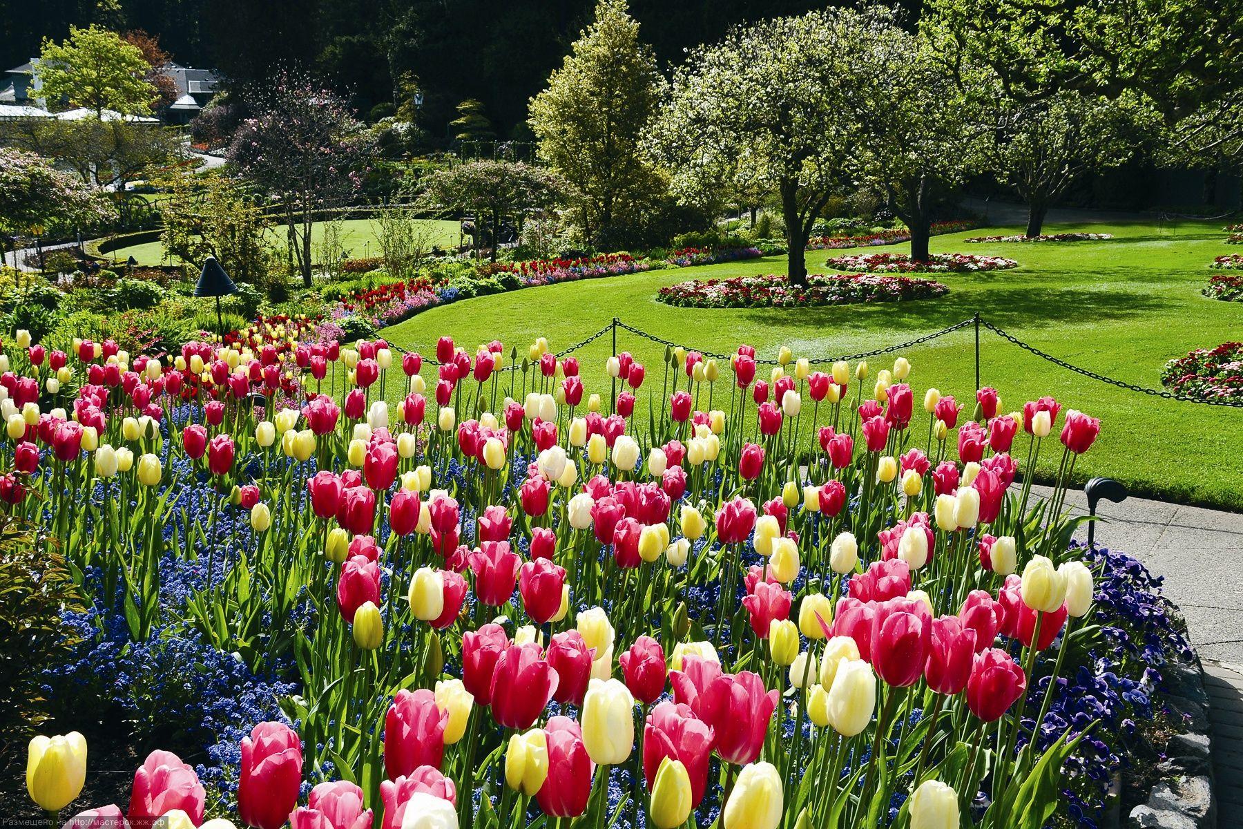 Springtime wallpapers HD free 325376 Beautiful gardens