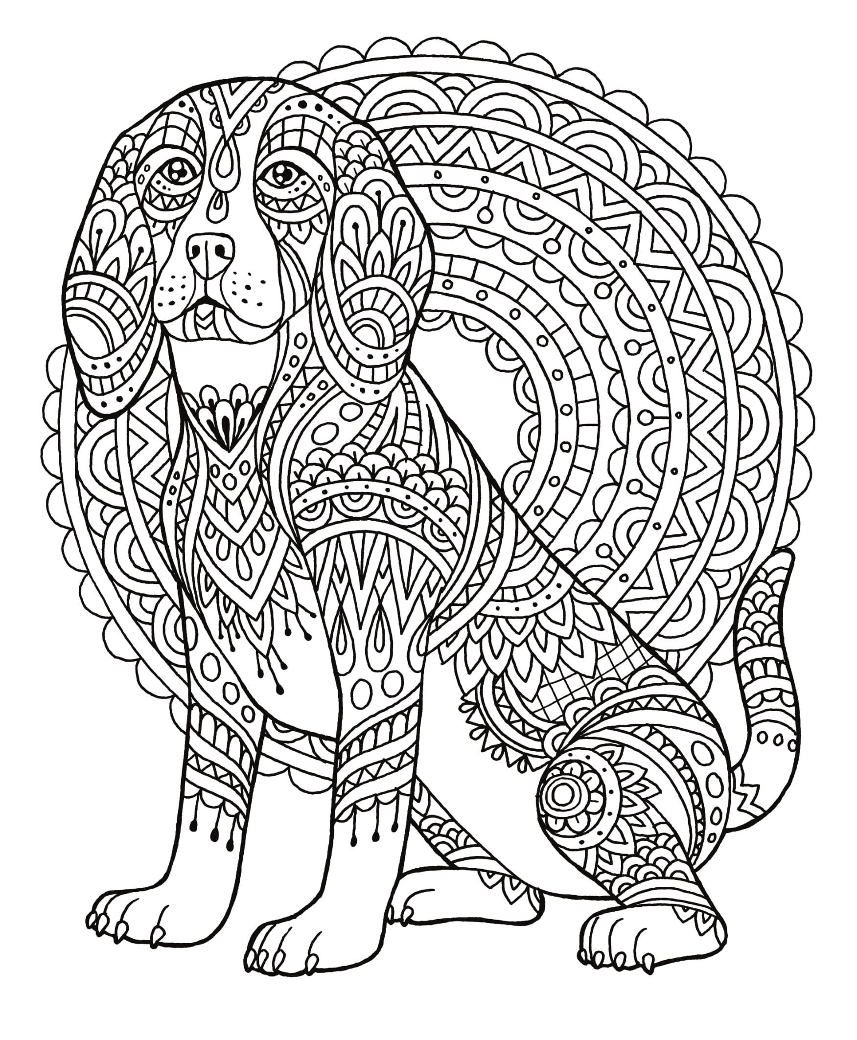 Dog Coloring Book For Adults By Colorit Colorit Hasby Mubarok 9780998225944 Amazon Com Books Dog Coloring Book Dog Coloring Page Pattern Coloring Pages