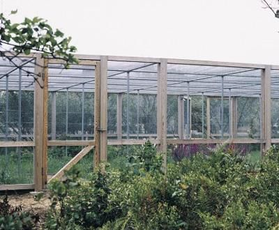 Custom Berry Enclosure This project combines function with