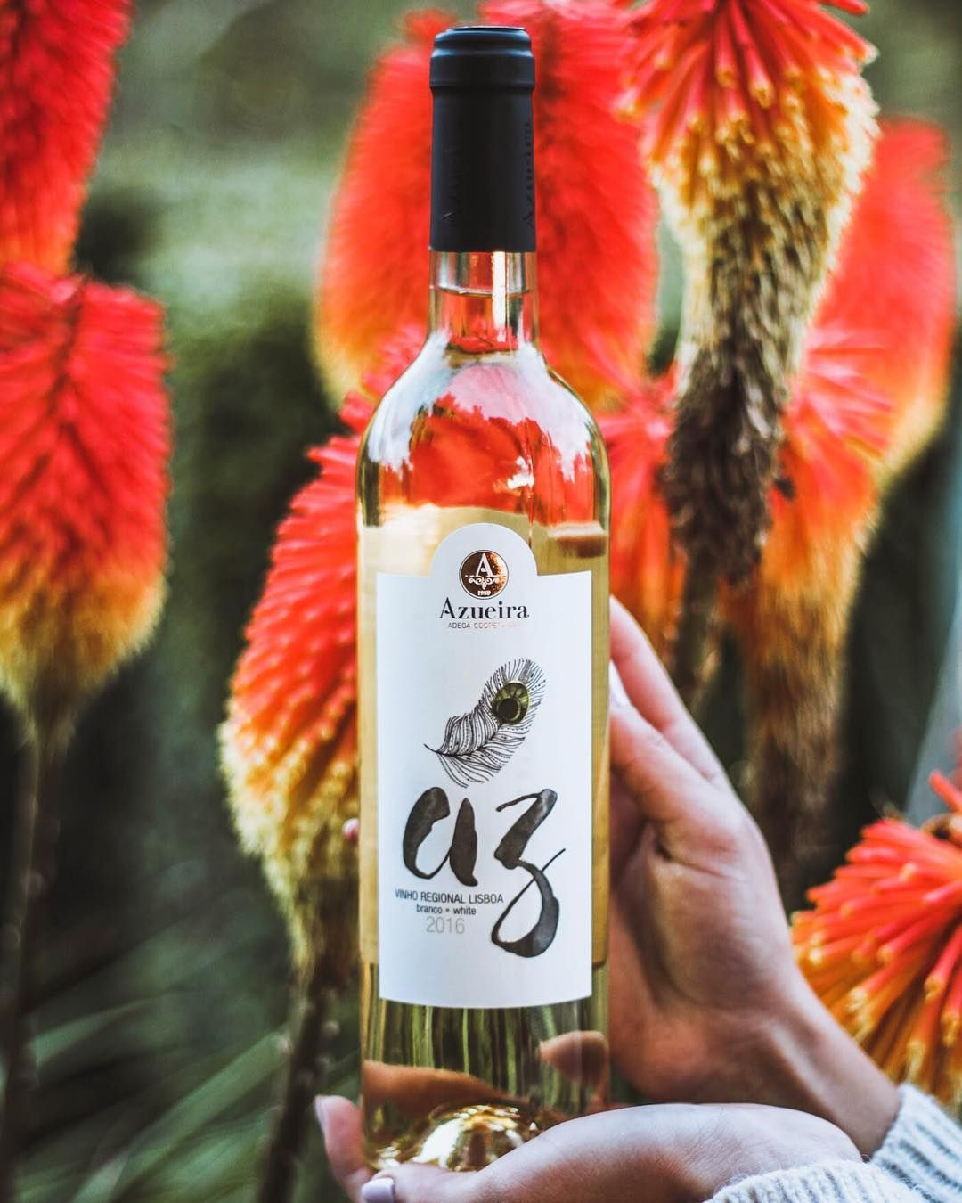 19 Gostos 2 Comentarios Adega De Azueira Adegadeazueira No Instagram O Nosso Az Branco E Um Vinho Delicioso E Refres Wine Bottle Wines Rose Wine Bottle