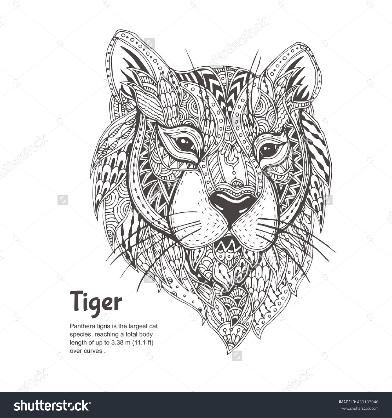 Hand Drawn Tiger With Ethnic Floral Doodle Pattern Coloring Page