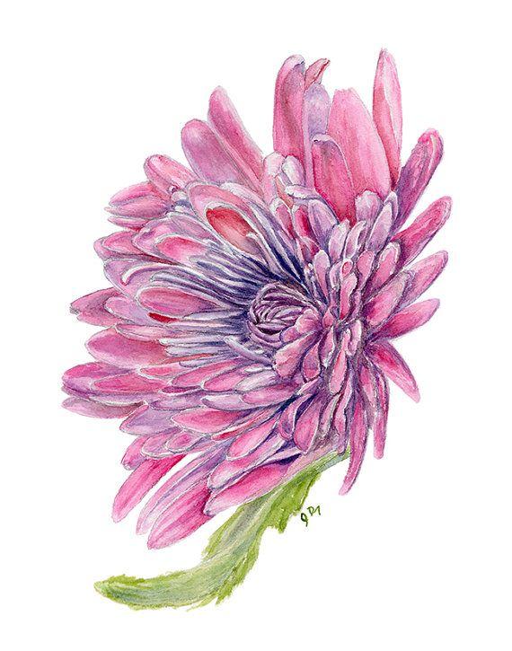 Mum Watercolor Painting Flower Fine Art Print 11 X 14 Chrysanthemum Flower Wall Decor Flora Watercolor Flowers Paintings Fine Art Giclee Prints Flower Painting