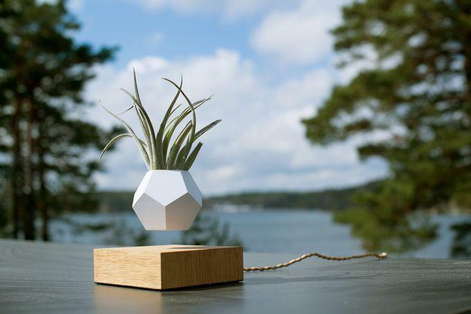 Lyfe levitating geometric planters by flyte http designwrld com lyfe