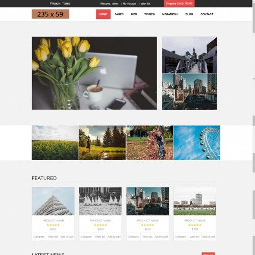 website template with shopping cart