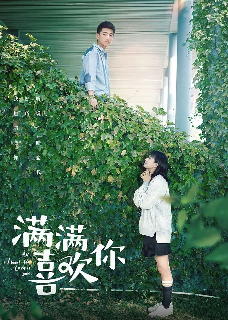 All I Want For Love Is You Korean Drama Movies Chines Drama Drama