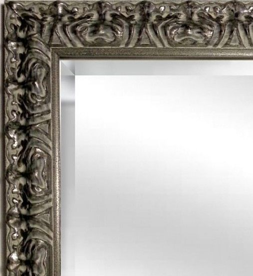 41x29 Ornate Gilded Silver Mirror, Wide Silver Leaf Wood Frame ...