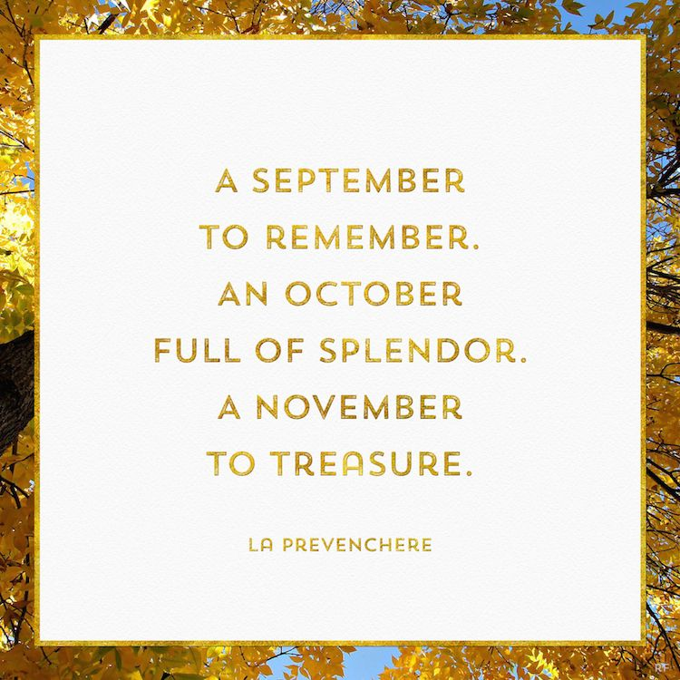 Beau Hello Autumn   Quotes About Autumn / Fall | Rossi Fox