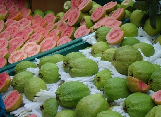 5 reasons people with diabetes should eat more guava diabetes 5 reasons people with diabetes should eat more guava ccuart Image collections