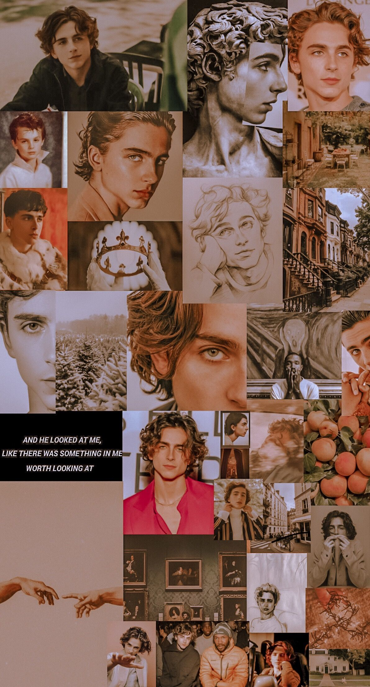 Its Timothee Chalamet S 24th Bday Today So I Made A Collage