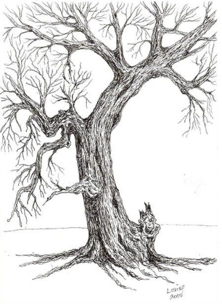 10 beautiful tree drawings for inspiration tree drawings drawings and inspiration