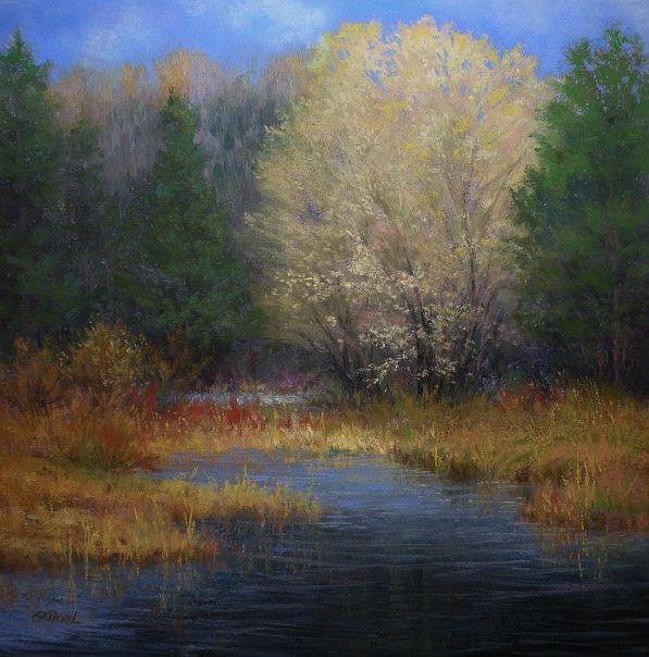 Paula Ann Ford, Fine Artist