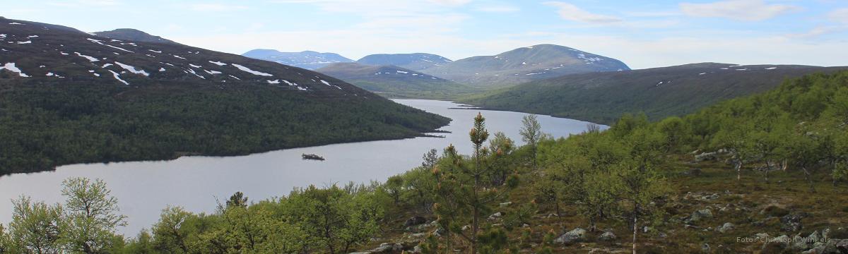 Heartland of Scandinavia - Naturwanderreise durch das skandinavische Fjäll: faszinierende skandinavische Landschaften entlang der norwegisch-schwedischen Grenze durch den Femunden Nationalpark und den Fulufjället Nationalpark.