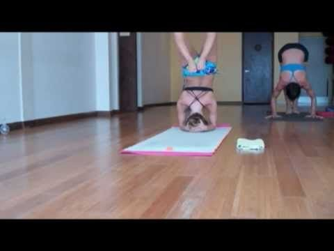 Ashtanga Yoga Third Series Advanced Backbends: An Average Monday ...