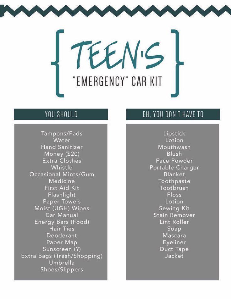 Photo of Teen Driver Car Kit