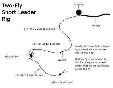 Two fly short leader rig steelhead spey fishing for Bass fly fishing setup