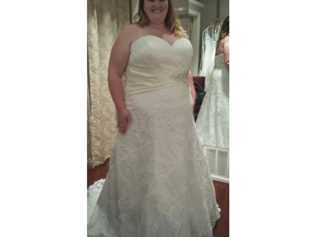 Custom plus size wedding dresses by darius bridal bridal gowns
