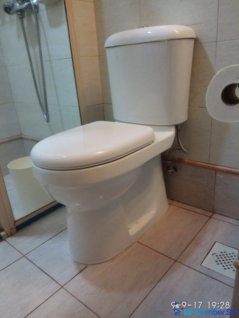 Toilet Bowl Singapore Choosing The Right One For Your Household