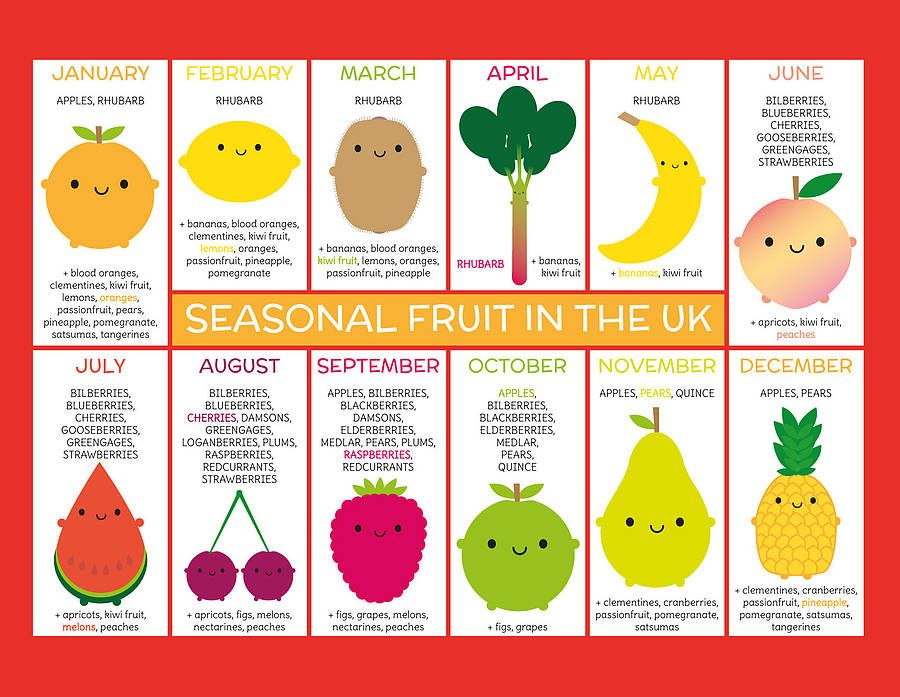 Seasonal Fruits And Vegetables Charts Fridge Magnets  Food Keto