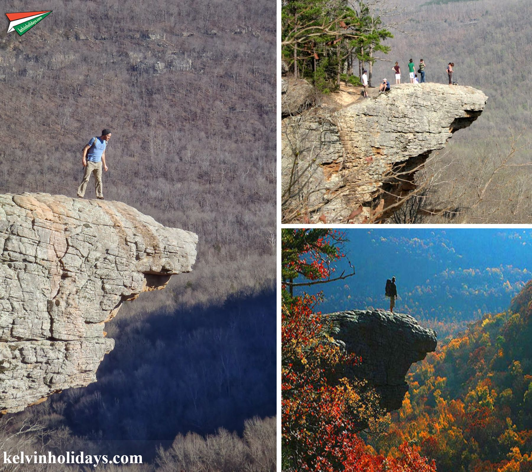 #HawksbillCrag Hawksbill Crag Trail or Whittaker Point Is located in the Ozark Forest – Upper Buffalo Wilderness, South-west of Newton County, Arkansas, USA. Hawksbill Crag Trail is a very popular hiking destination and some say it's Arkansas's most photographed rock.
