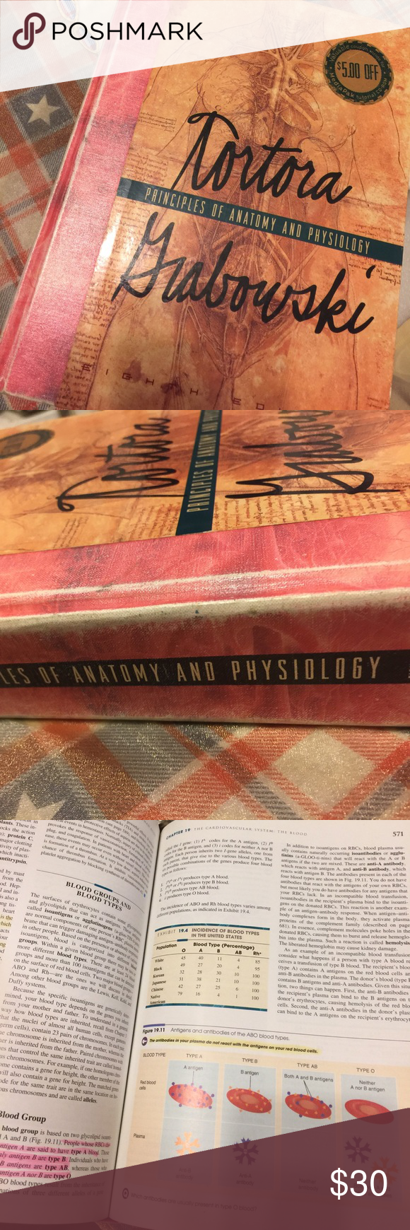 Principles of anatomy and physiology 8th edition | Anatomy
