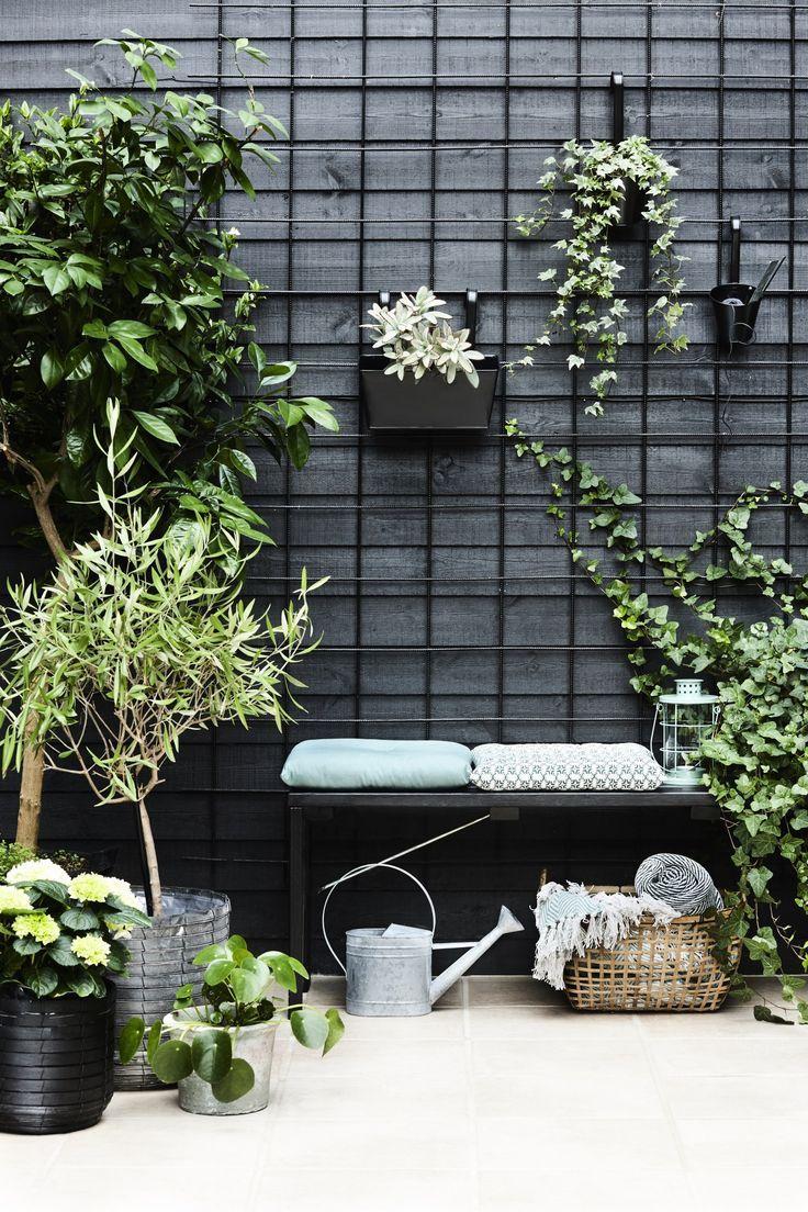 Photo of Urban Potager Garden