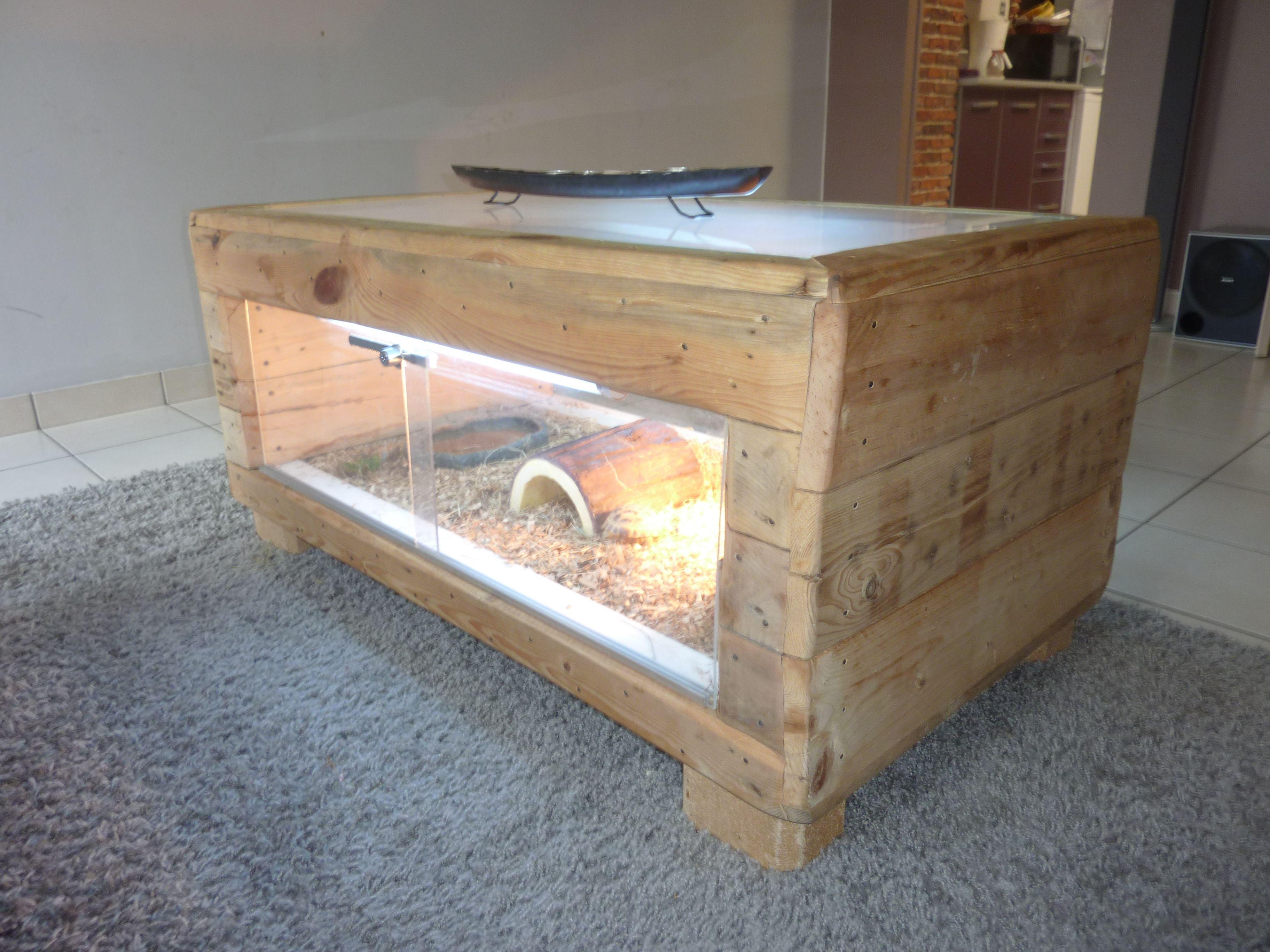 Pourquoi pas une table basse terrarium https www for Quoi faire avec une palette en bois