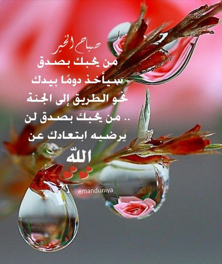 من يحبك بصدق Dew Drops Water Art Flowers