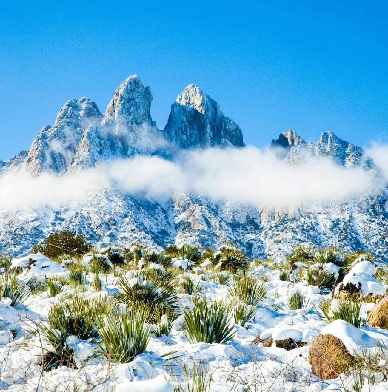 Snow And Chilled Mist Linger On The Arid Landscape Of Organ Mountains Desert Peaks National Monument In New M In 2020 With Images Land Of Enchantment New Mexico National Monuments