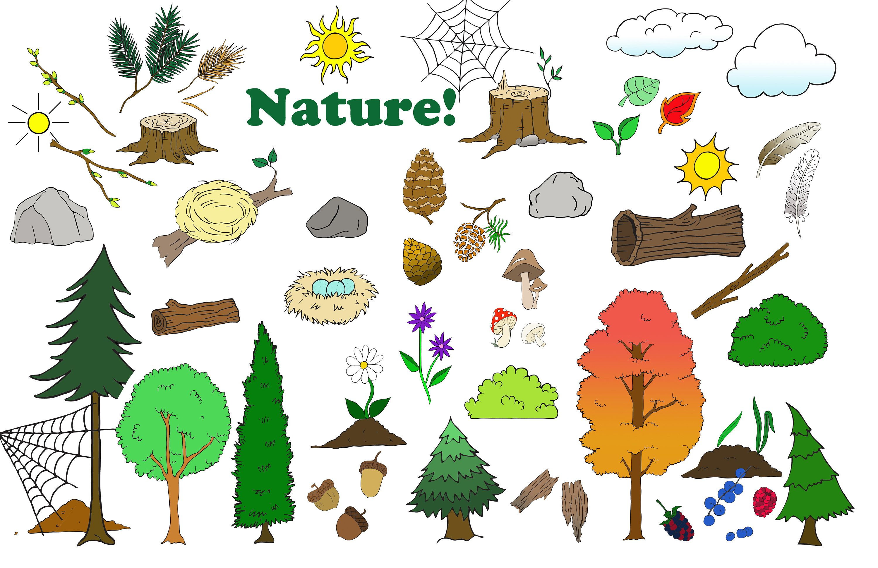 Camping Clipart Animal Clipart Nature Tree Adventure Etsy Animal Clipart Clip Art Camping Clipart