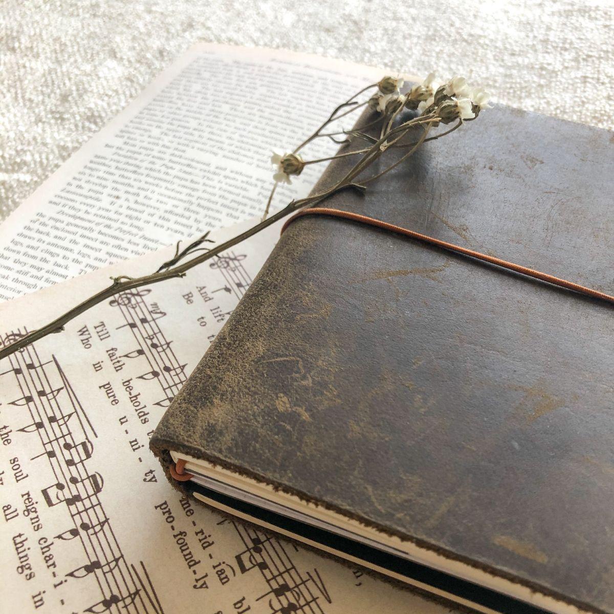 #travelersnotebook #journal #journaling