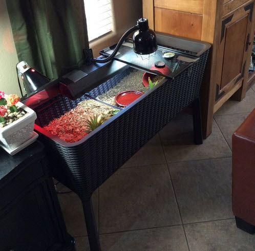 Turn A Planter Box Into A Tortoise Table Diy Petdiys