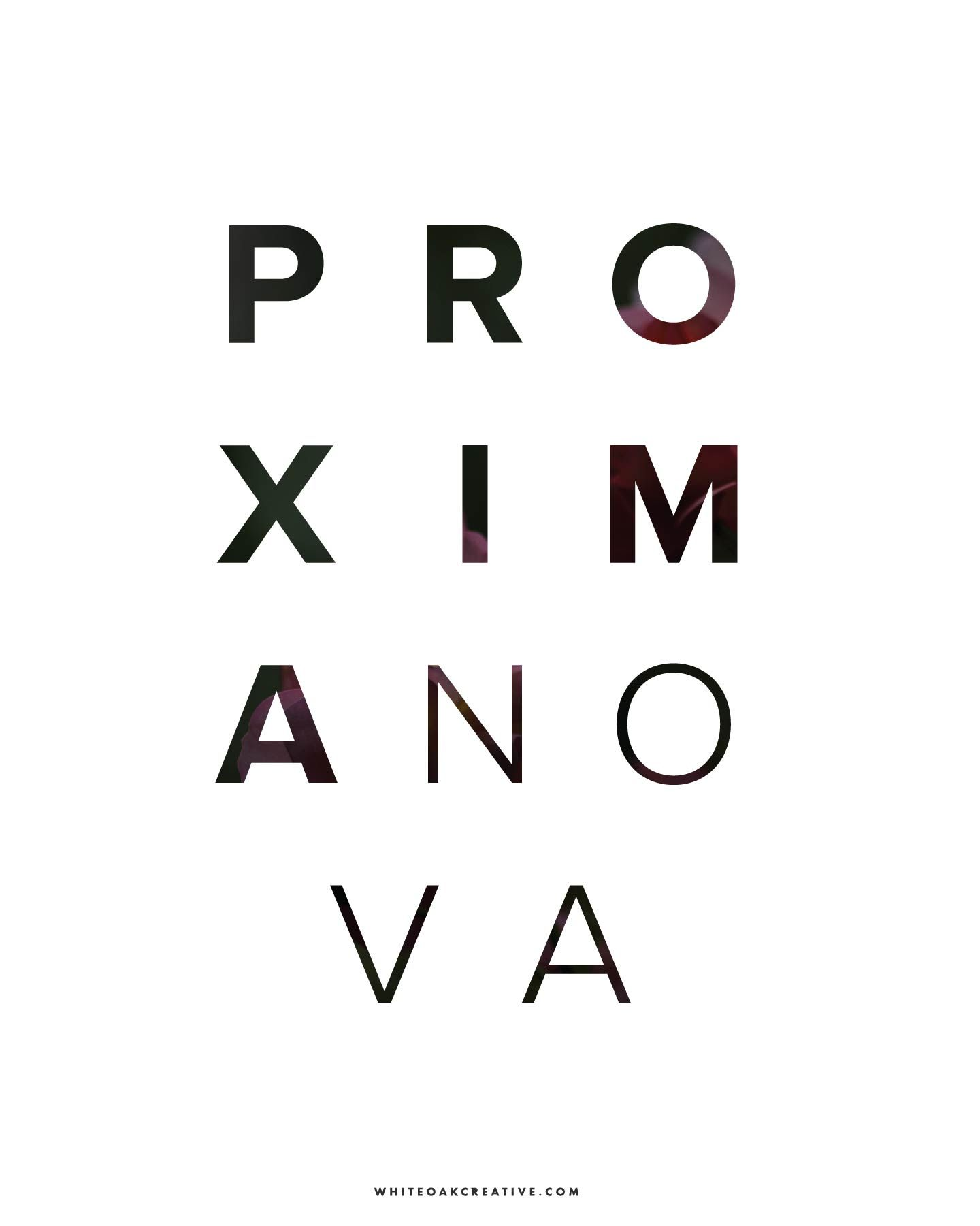 Proxima Nova Might Be One Of My Favorite Fonts To Use In Body Copy On Websites For Its Sharp Custom Blog Design Logo Design Inspiration Typography Inspiration