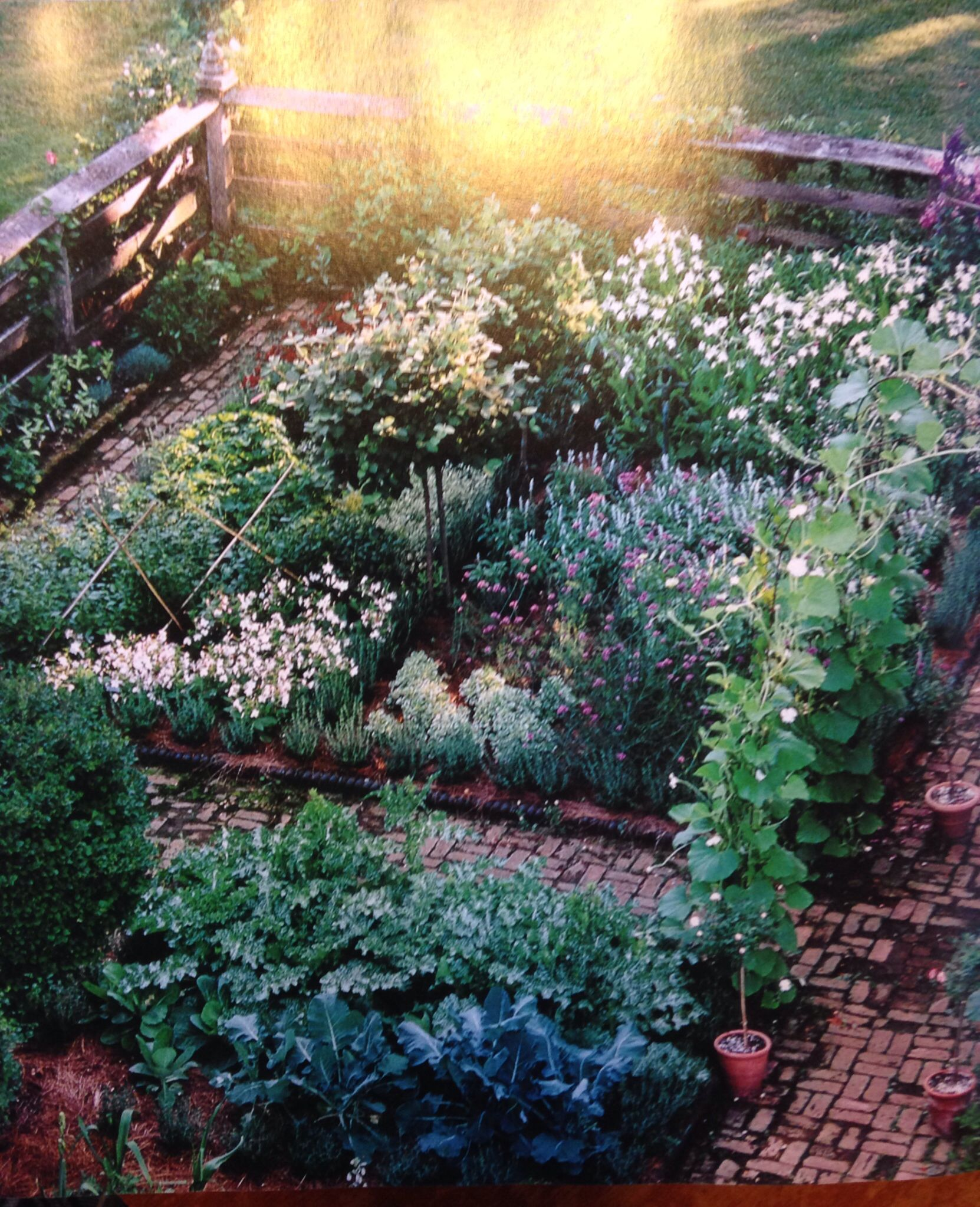 Bunny williams 39 s kitchen garden from her book on gardens for Jardines con maicillo