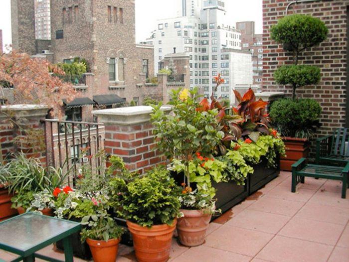54 bilder mit bepflanzung f r dachterrasse bepflanzung dachterrassen und garten pflanzen. Black Bedroom Furniture Sets. Home Design Ideas